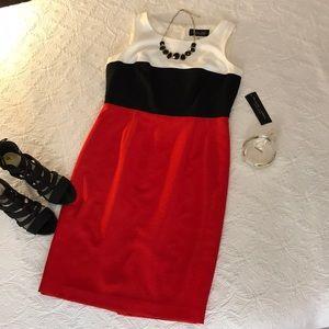 BLACK LABEL BY EVAN-PICONE DRESS!